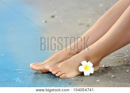 Female legs with flower on sand beach