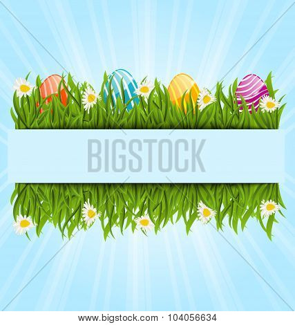 Easter colorful eggs and camomiles in green grass with space for