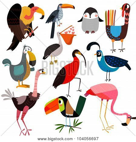 Big Vector Set  Of Different Wild Birds-vulture,penguin, Pelican, Turkey, Toucan, Flamingo, Ostrich,