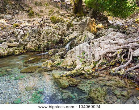 Seven Springs Rhodes