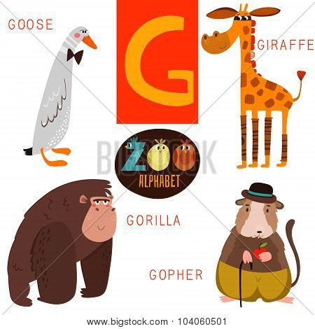 Cute Zoo Alphabet In Vector.g Letter. Funny Cartoon Animals:goose,giraffe,gorilla,gopher. Alphabet D