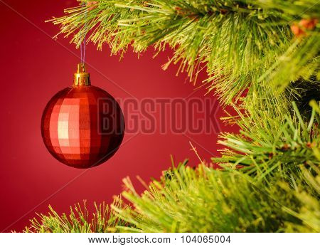 red ball on christmas tree