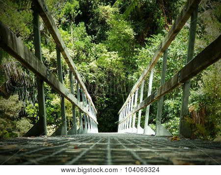 Forest Bridge In Abel Tasman National Park, South Island, New Zealand