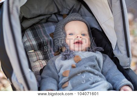 Baby In Sitting Stroller On Nature