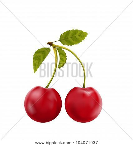 Pair Realistic Pulpy Cherries with Green Leaves