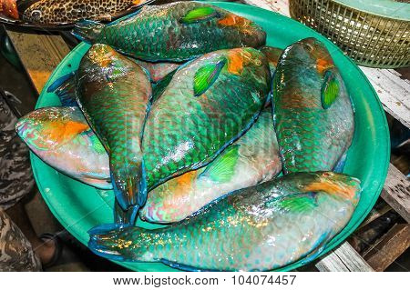 fishes at market