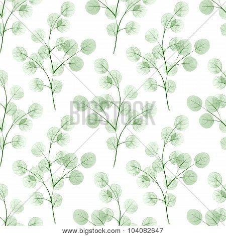 Branches with round leathes. Watercolor background. Seamless pattern 3