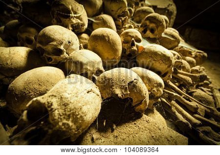 Middle Age Skulls