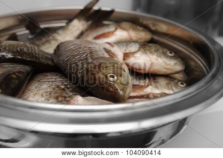 Raw fresh fish in cup