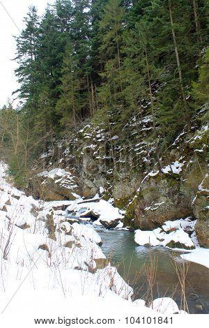 Winter river in Carpathian mountains