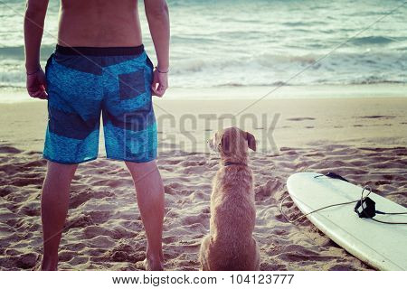 Surfer And Dog With A Surfboard