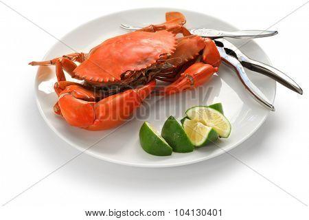steamed mud crab, male