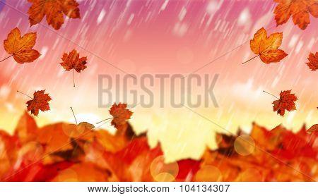 Autumn leaves against magical sky