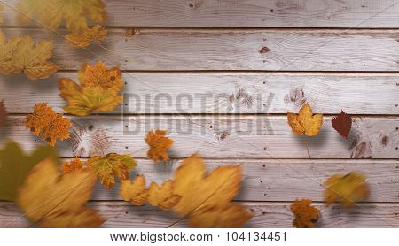 Autumn leaves against digitally generated grey wooden planks