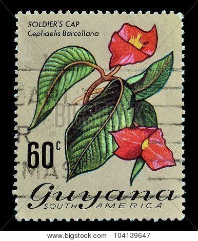 Guyana 1973