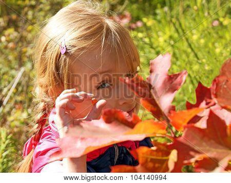 Little Girl Resting In Autumn Park