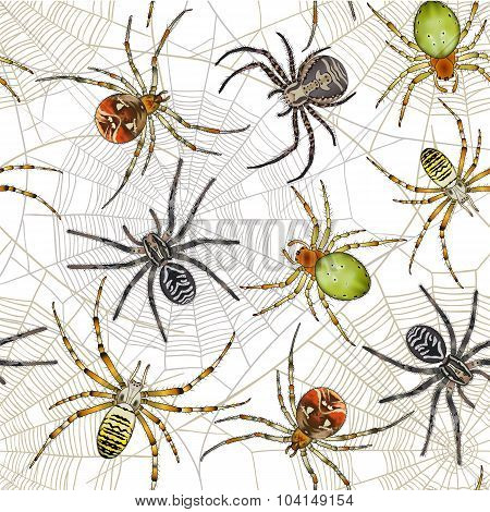 Halloween Seamless Pattern With Spiders On Web