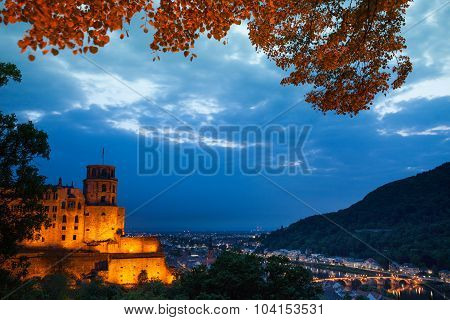 Night view of Schloss Heidelberg and cityscape