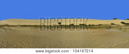 Sand Dune And Blue Sky Panorama