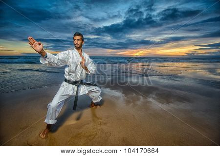 karate master in defense position