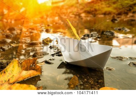 Paper boat in a water and fall leaves. Toned image.