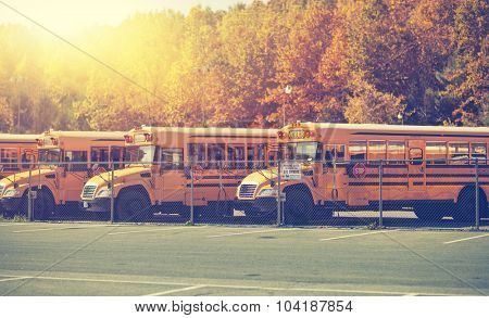 Row of generic school buses during the fall with all identifying markings removed.