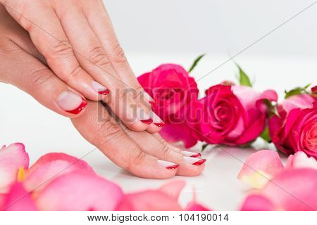 Close-up Of Woman Hands With Roses