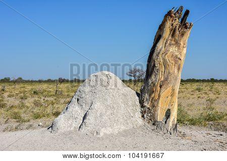 Termite Mound - Namibia