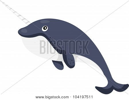 Illustrator of narwhal