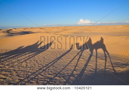 Shadow of caravan on the desert sand