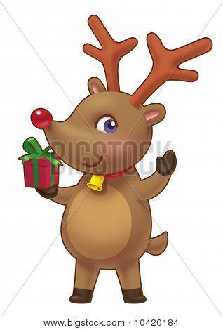 Cute Rein Deer