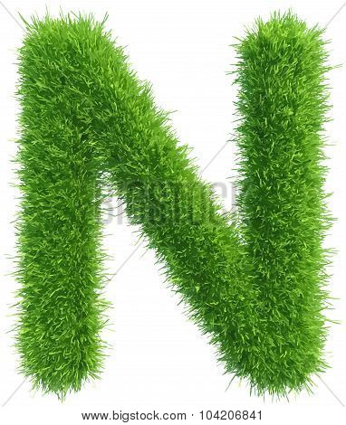 Vector capital letter N from grass on white background