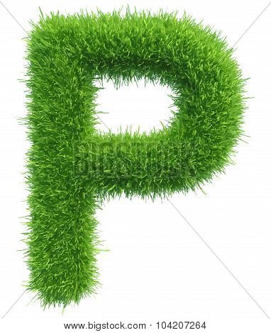 Vector capital letter P from grass on white background