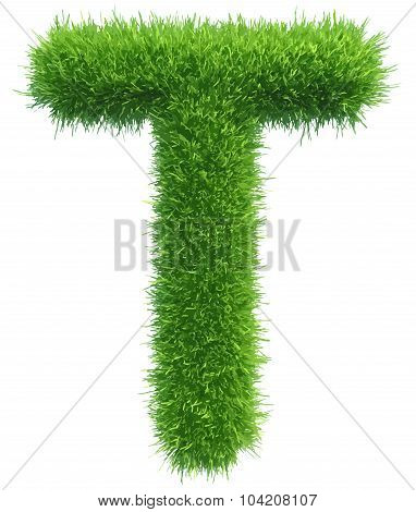 Vector capital letter T from grass on white background