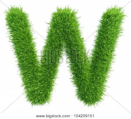 Vector capital letter W from grass on white background