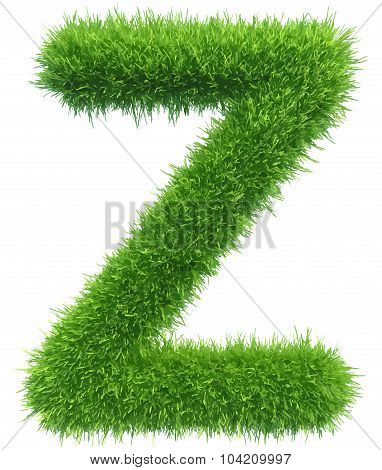 Vector capital letter Z from grass on white background