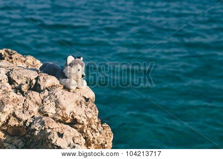 soft toy on a rock against the sea