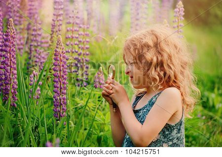 cute child girl exploring nature with loupe on summer flower field