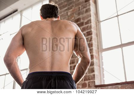 Rear view of a muscular man showing his body at the gym