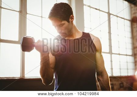 Handsome man lifting dumbbell at gym