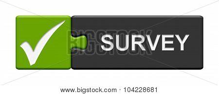 Puzzle Button Showing Survey