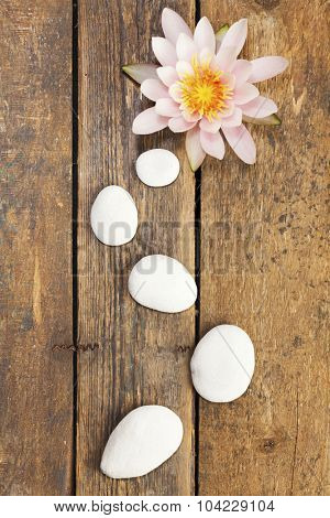 Water lily and path of pebbles on rustic wooden background