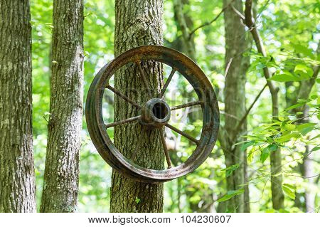 Old Spoked Wheel Hanging From Tree