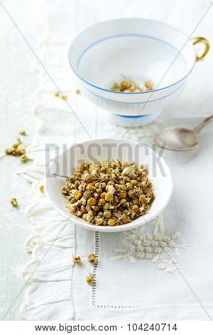 Organic chamomile (matricaria chamomilla) for tea