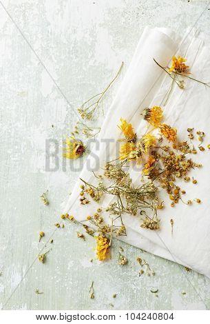 Organic herbs for tea