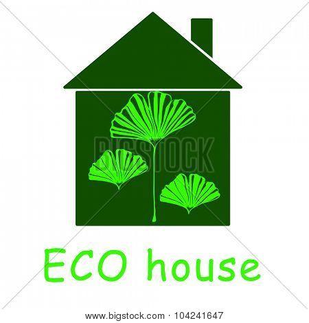 Eco house on white