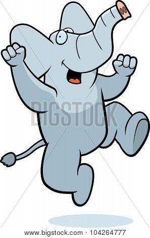 Elephant Jumping