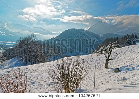 Beautiful Winter Landscape Near The Town Of Gruyeres