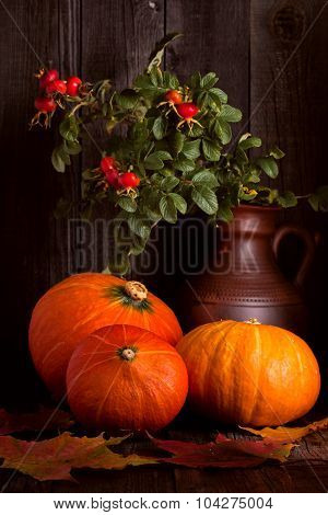 Autumn Pumpkin With Branches Of Rosehips On Wooden Background.