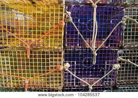 Purple And Yellow Lobster Pots